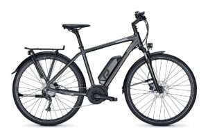 Raleigh Stoker 9 homme Bosch Performance 500Wh